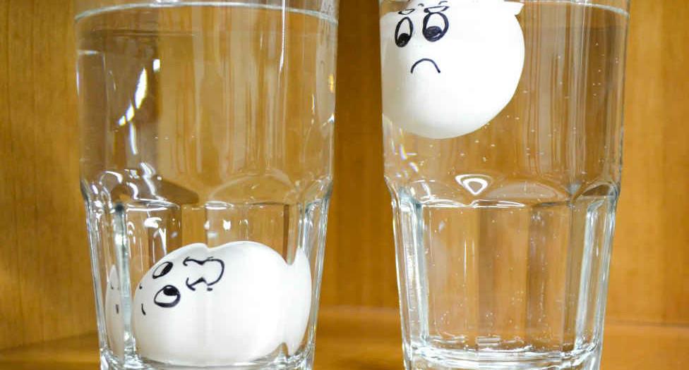 البيض-الفاسد1